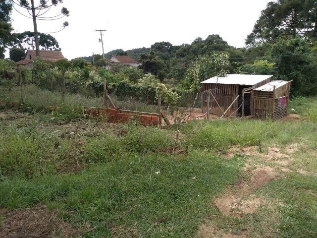 REF 2456 -Chácara Excelente na Serrinha, com 10.000 m², com uma casa - Foto 2
