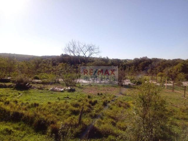 Área à venda, 48400 m² por R$ 120.000,00 - Bofete - Bofete/SP - Foto 9