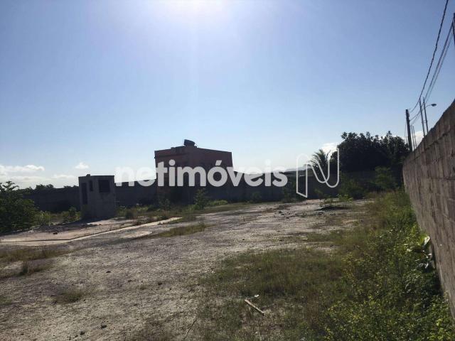 Terreno à venda com 0 dormitórios em Morada da barra, Vila velha cod:768576 - Foto 2