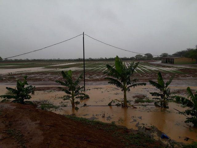 Fazenda com 90 ha em João Dourado - Foto 9