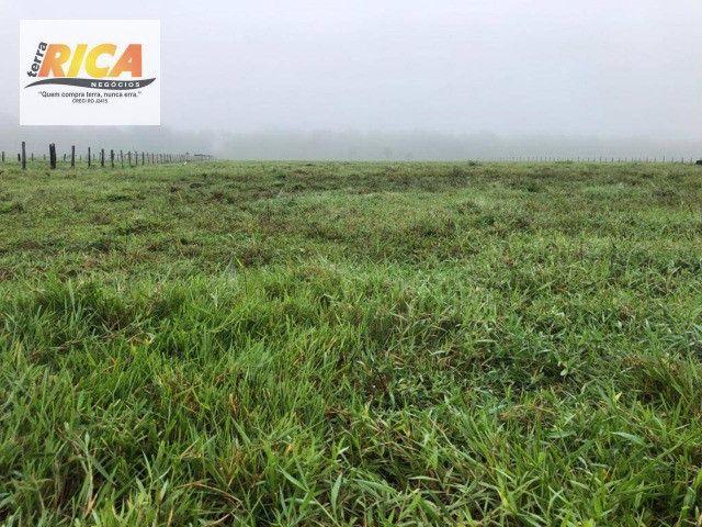 Fazenda a venda com 1.151 hectares no município de Canutama- AM - Foto 2