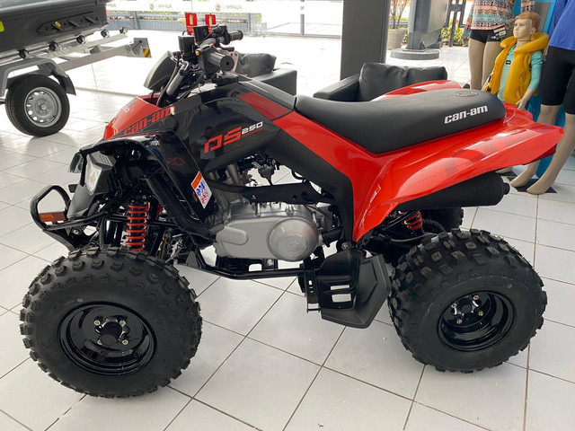 Can-am ds 250 - Foto 3