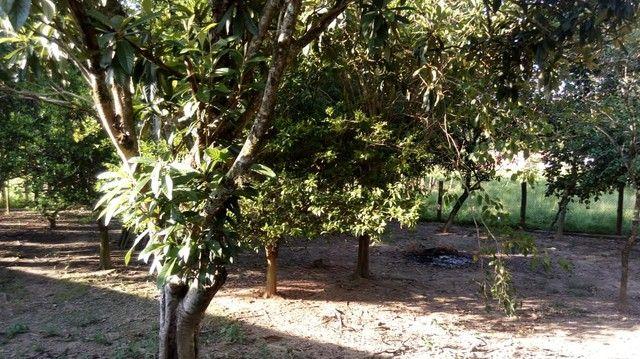 Chácara para venda com 15000 metros quadrados com 4 quartos em Centro - Porangaba - SP - Foto 17