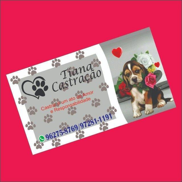 Cartão de visita frente colorida 500 uni. Arte inclusa. - Foto 2