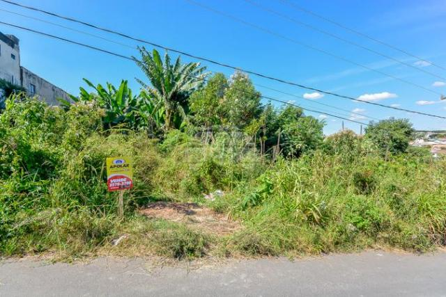 Terreno à venda em Gralha azul, Fazenda rio grande cod:151562 - Foto 17