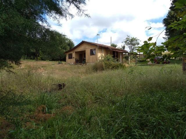 REF 2456 -Chácara Excelente na Serrinha, com 10.000 m², com uma casa - Foto 7