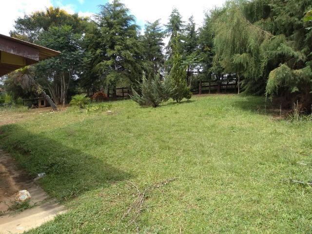 REF 2456 -Chácara Excelente na Serrinha, com 10.000 m², com uma casa - Foto 4