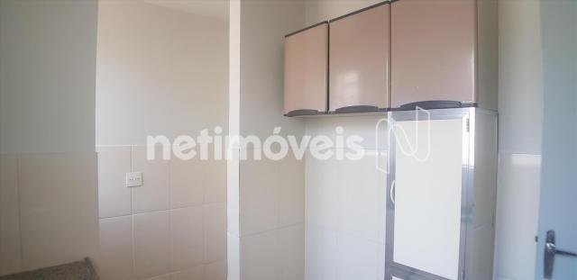 Apartamento para alugar com 3 dormitórios em Caiçaras, Belo horizonte cod:774626 - Foto 9
