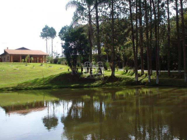 Chácara à venda em Miringuava, São josé dos pinhais cod:12972.001 - Foto 7