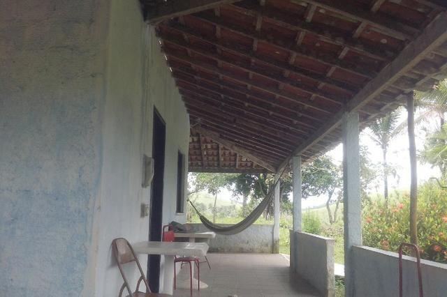 Sitio Nazaré das Farinhas - Foto 4