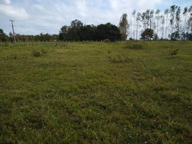 Vende-se terreno próximo a Prado - Foto 4