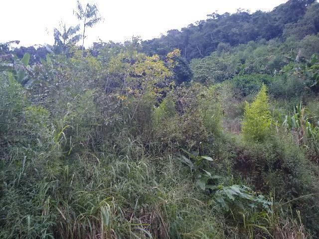 Sitio tijuco preto 55 mil metros - Foto 4