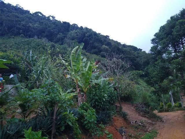 Sitio tijuco preto 55 mil metros - Foto 3
