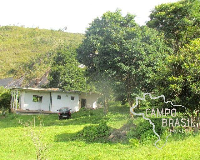 Campo Brasil Imóveis, realizando seu sonho rural! Fazenda de 84.4 hectares em Carvalhos-MG - Foto 8