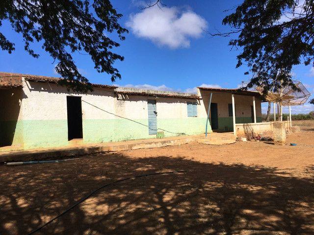 Fazenda com 90 ha em João Dourado - Foto 11