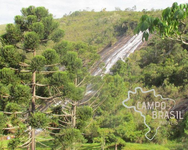 Campo Brasil Imóveis, realizando seu sonho rural! Fazenda de 84.4 hectares em Carvalhos-MG - Foto 20