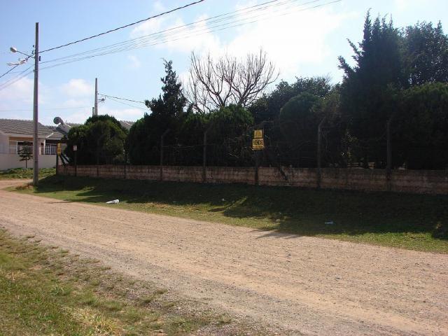 Terreno à venda em Uvaranas, Ponta grossa cod:4788-13 - Foto 4