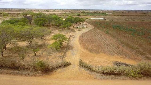 Fazenda com 90 ha em João Dourado - Foto 7