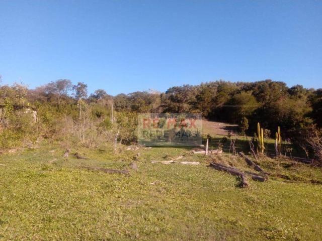 Área à venda, 48400 m² por R$ 120.000,00 - Bofete - Bofete/SP - Foto 6