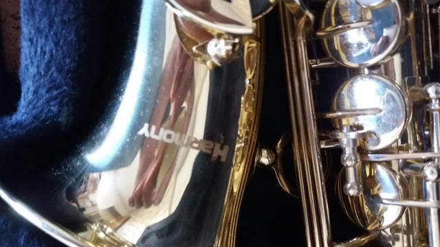 sax tenor - Foto 2