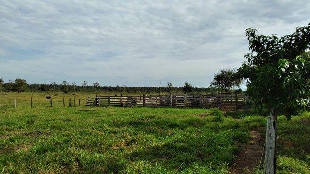 Fazenda a venda Com 746 equitares *parcelo  - Foto 3