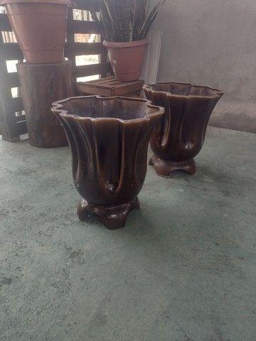 Plantas com vasos - Foto 6