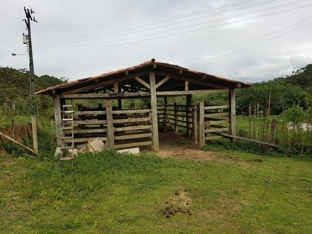 FZ 037- Fazenda Próximo a Ipiaú ? BA com 30 hectares. - Foto 2