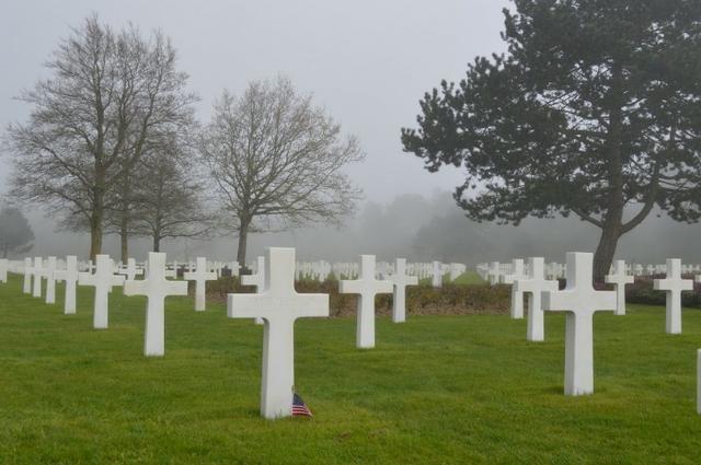 Terreno 1 gaveta cemitério Morada da Paz