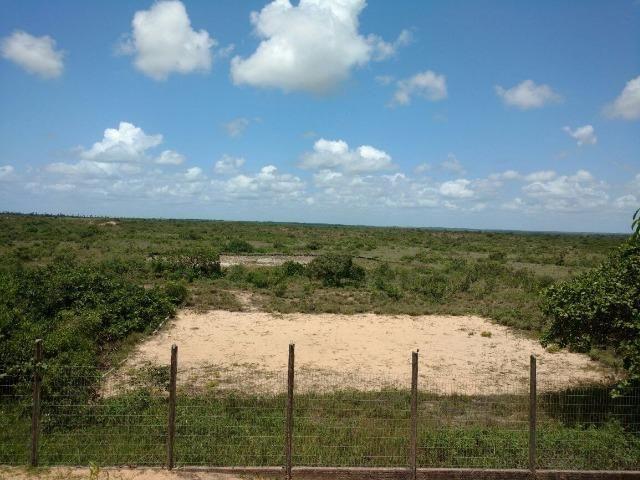 Fazenda no,litoral norte - Foto 8