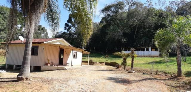 Vendo ou Troco Chácara em Contenda - 3.600 m2 - Foto 4