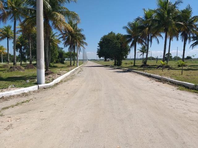 :Cód: 31 Vendo terreno na parte mais valorizada do Residencial Unavida. Em Unamar - Tam - Foto 6