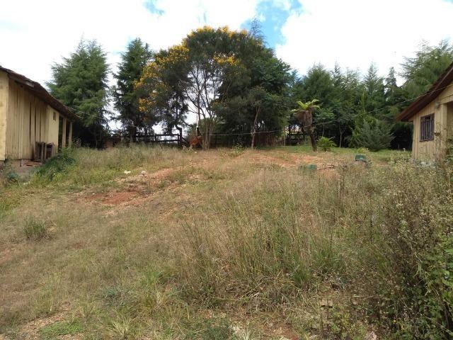 REF 2456 -Chácara Excelente na Serrinha, com 10.000 m², com uma casa - Foto 12