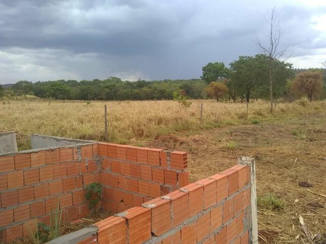 Fazenda Curral do fogo 23 hectares - Foto 6