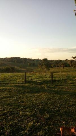 Propriedade rural - Foto 3