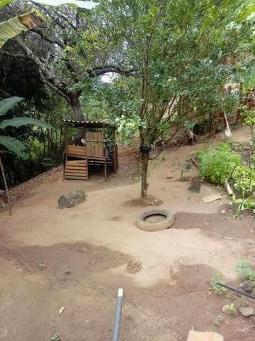 Sitio Timbui Fundão ES Oportunidade - Foto 8