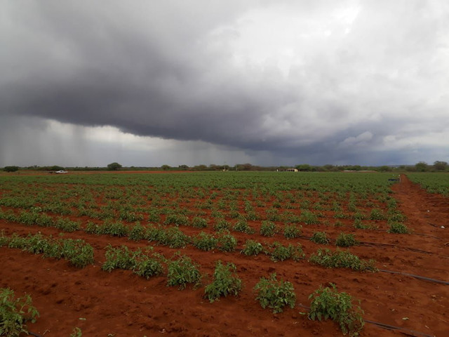 Fazenda com 90 ha em João Dourado - Foto 10