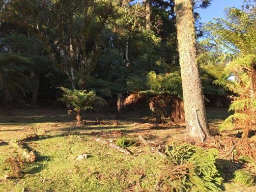 Terreno amplo no belo condomínio Quinta da Serra - Foto 12