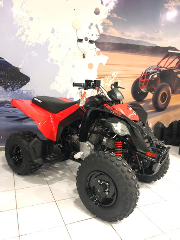 Can-am ds 250 - Foto 2