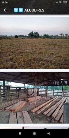 Terras, sítios, fazendas e chácara pra vender - Foto 3