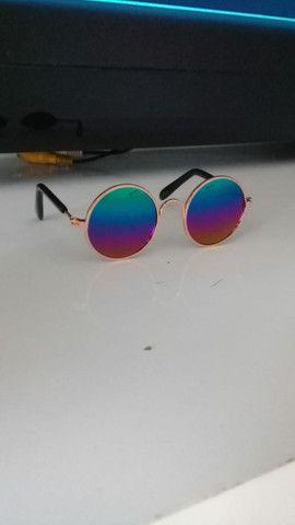 Óculos de sol para cães e gatos