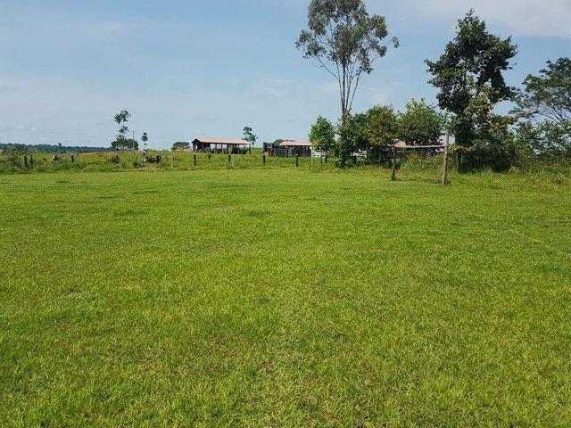 Vendo  fazenda no apui - Foto 3