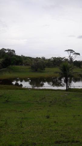 Saquarema - Terreno Madressilva - Rio Seco - 10.139m2 Próximo Km 64 Amaral Peixoto - Foto 8