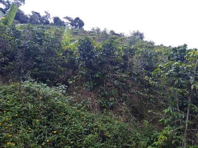 Sitio tijuco preto 55 mil metros - Foto 8