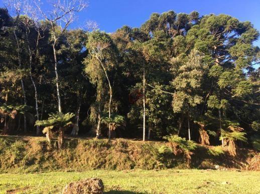 Terreno amplo no belo condomínio Quinta da Serra - Foto 15