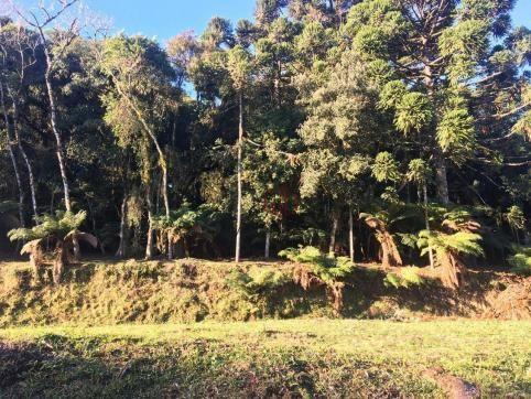 Terreno amplo no belo condomínio Quinta da Serra - Foto 19