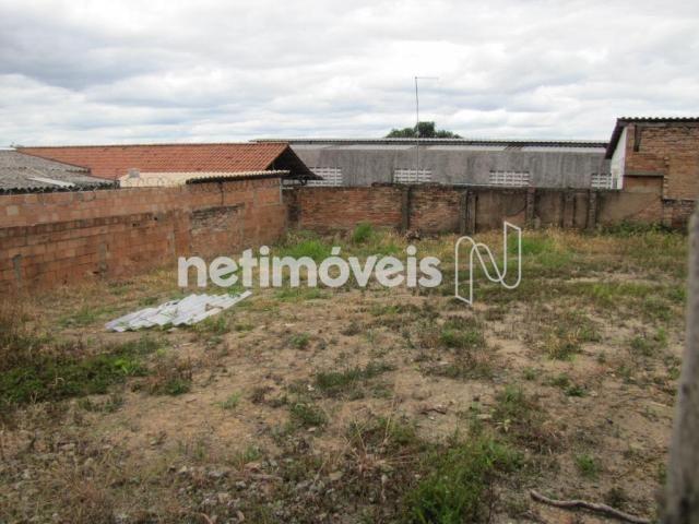 Terreno à venda em São francisco, Belo horizonte cod:717333 - Foto 5