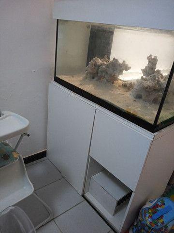 Aquario com sump