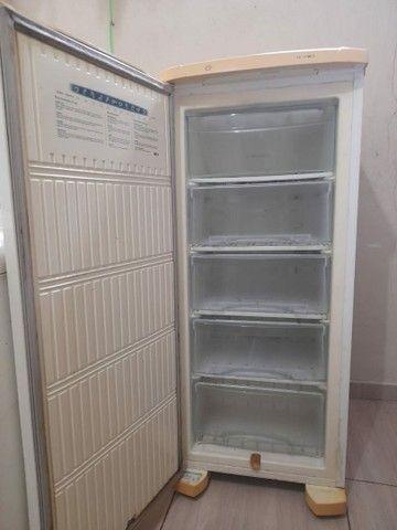 Vendo freezer Electrolux em perfeita condições.$700