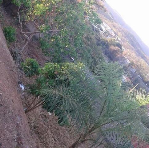 Terreno 450m2 - Foto 6