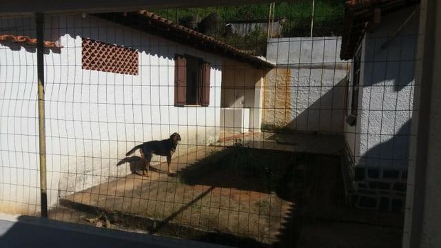 Lindo Sítio no Bairro Arcozelo em Paty do Alferes - Foto 13
